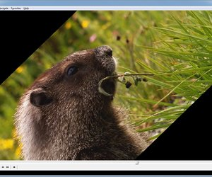 How do i rotate in media player classic techwalla rotating a video in media player classic ccuart Image collections