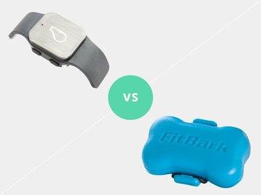 Whistle GPS vs FitBark