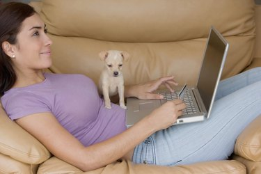 Side profile of a young woman lying on a couch and working on a laptop with a puppy sitting on her