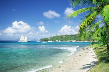Caribbean, Grenadines, Britannia Bay, Mustique, View of a beach