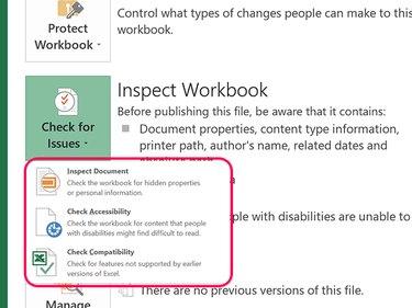 Inspect Workbook options.