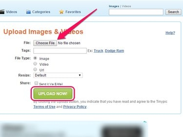TinyPic home page, with Choose File and Upload Now buttons highlighted.