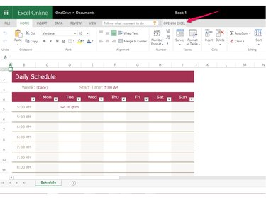 Fill in the schedule or click Open in Excel.