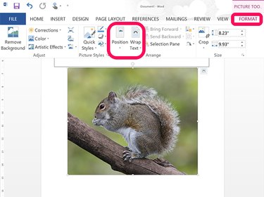 Picture Tools Format ribbon