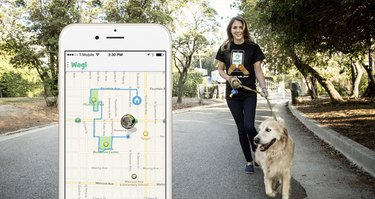 Wag app with dog and walker