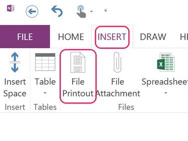 Click the File Printout option.