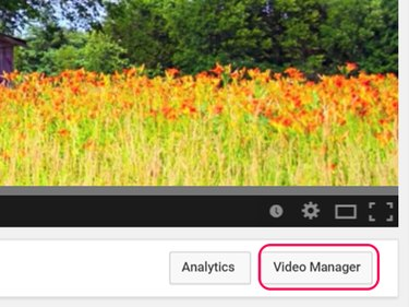 Click Video Manager.