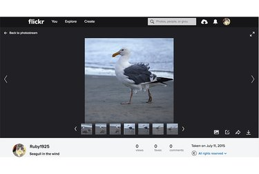 Flickr individual photo interface