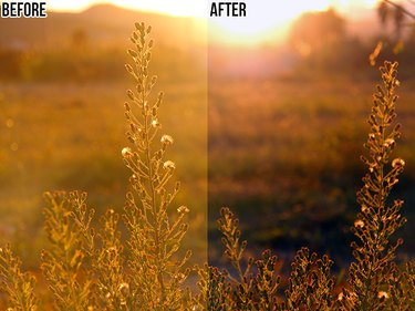 A comparison of a photo before and after automatic color adjustment in Photoshop.