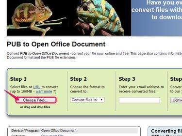 Click Choose Files to begin.