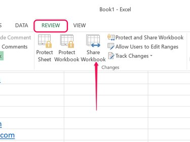 Click the Share Workbook icon.