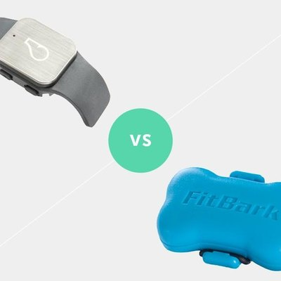 Whistle GPS vs FitBark