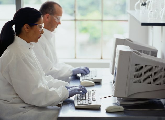 Chemists Typing on a Computer