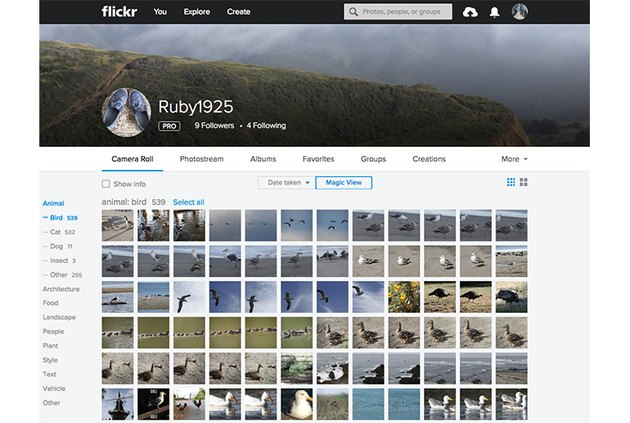 Flickr Magic View