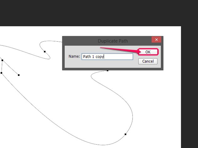 Click OK in the Duplicate Path dialog.