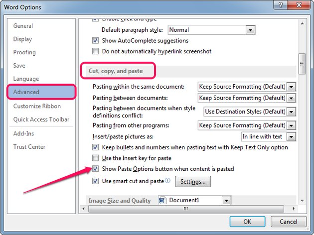 Checking the Show Paste Options Button When Content Is Pasted box in Word.