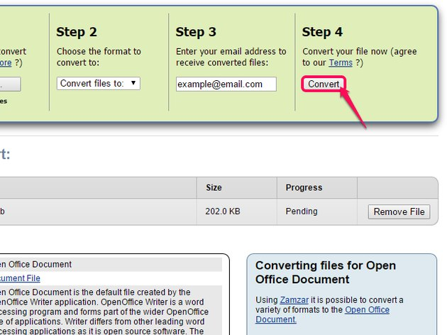 Click the Convert button listed under Step 4.
