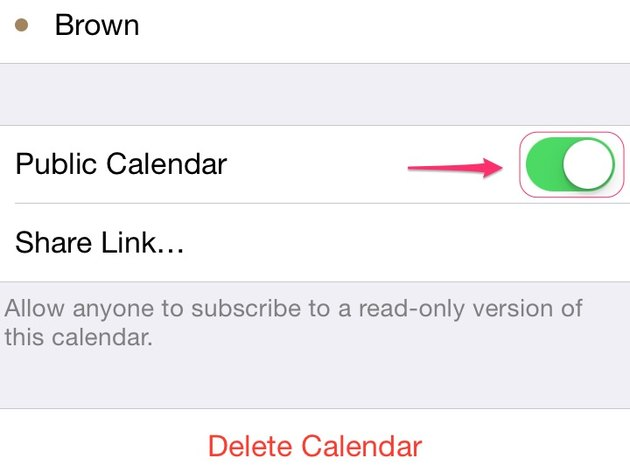 Tap the Public Calendar toggle.