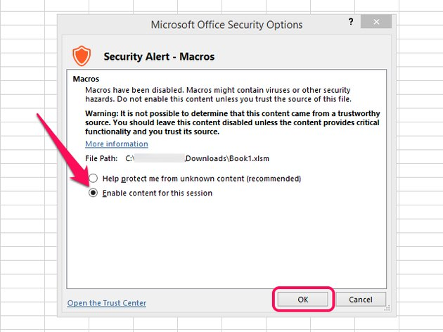 Microsoft Office Security Options screen.