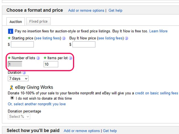 The eBay sale listing form, with the lot items format added.