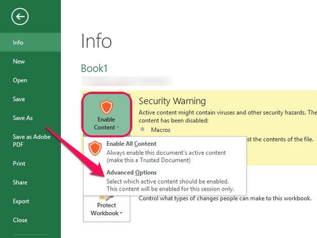 Excel 2013 Info screen.