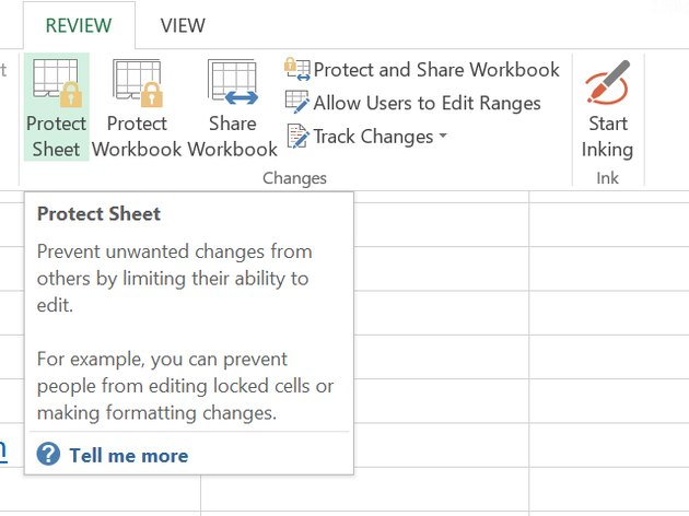 Click Protect Sheet.
