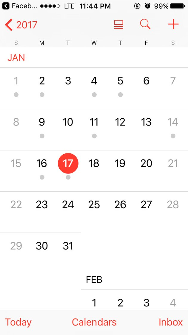 Screen capture of the month of January displayed in the iPhone calendar app.