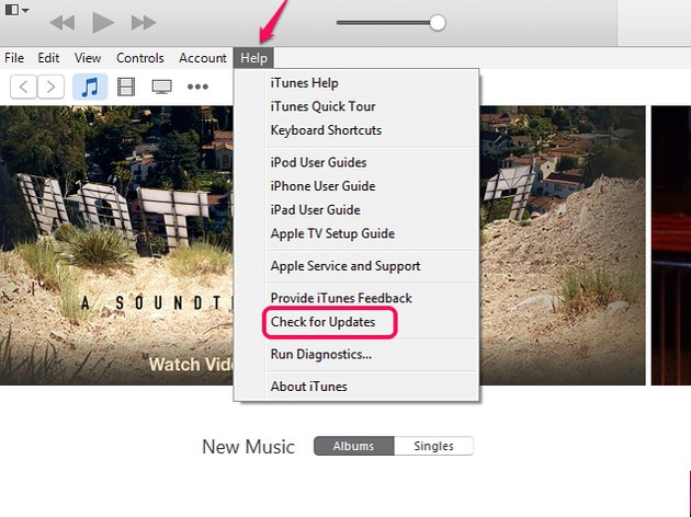 Select Check for Updates in the iTunes Help menu.