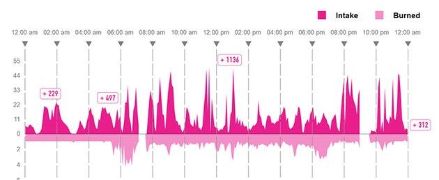 Screenshot of the GoBe's Energy Balance display
