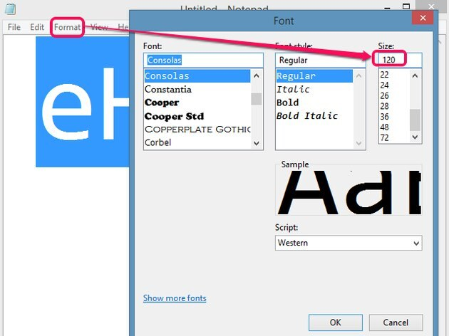 Notepad's Font dialog enables large font sizes.
