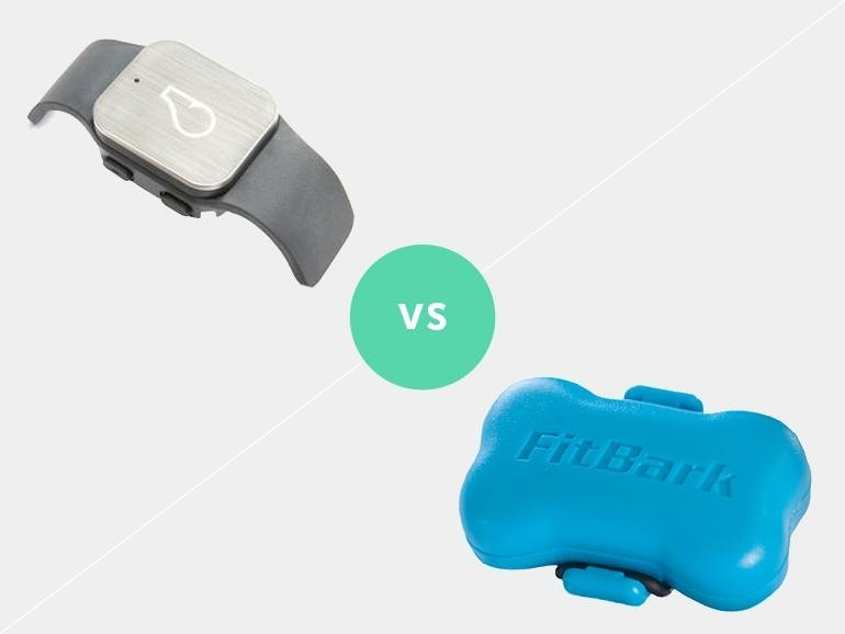 a Doggie Tracker Faceoff: Whistle GPS vs FitBark