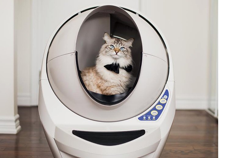 a A High-Tech Litter Box Could Be in Your Cat's Future