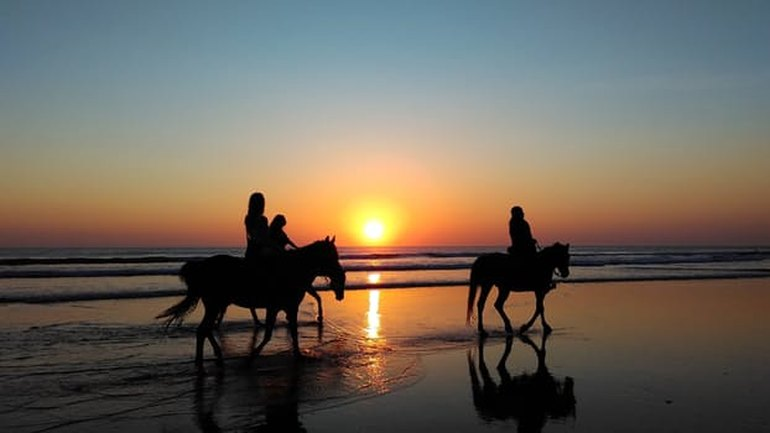 People horseback riding at sunset