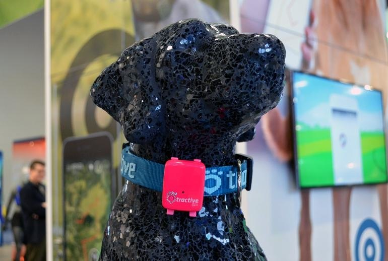 a Oddly Specific Wearable Gadgets at CES 2016